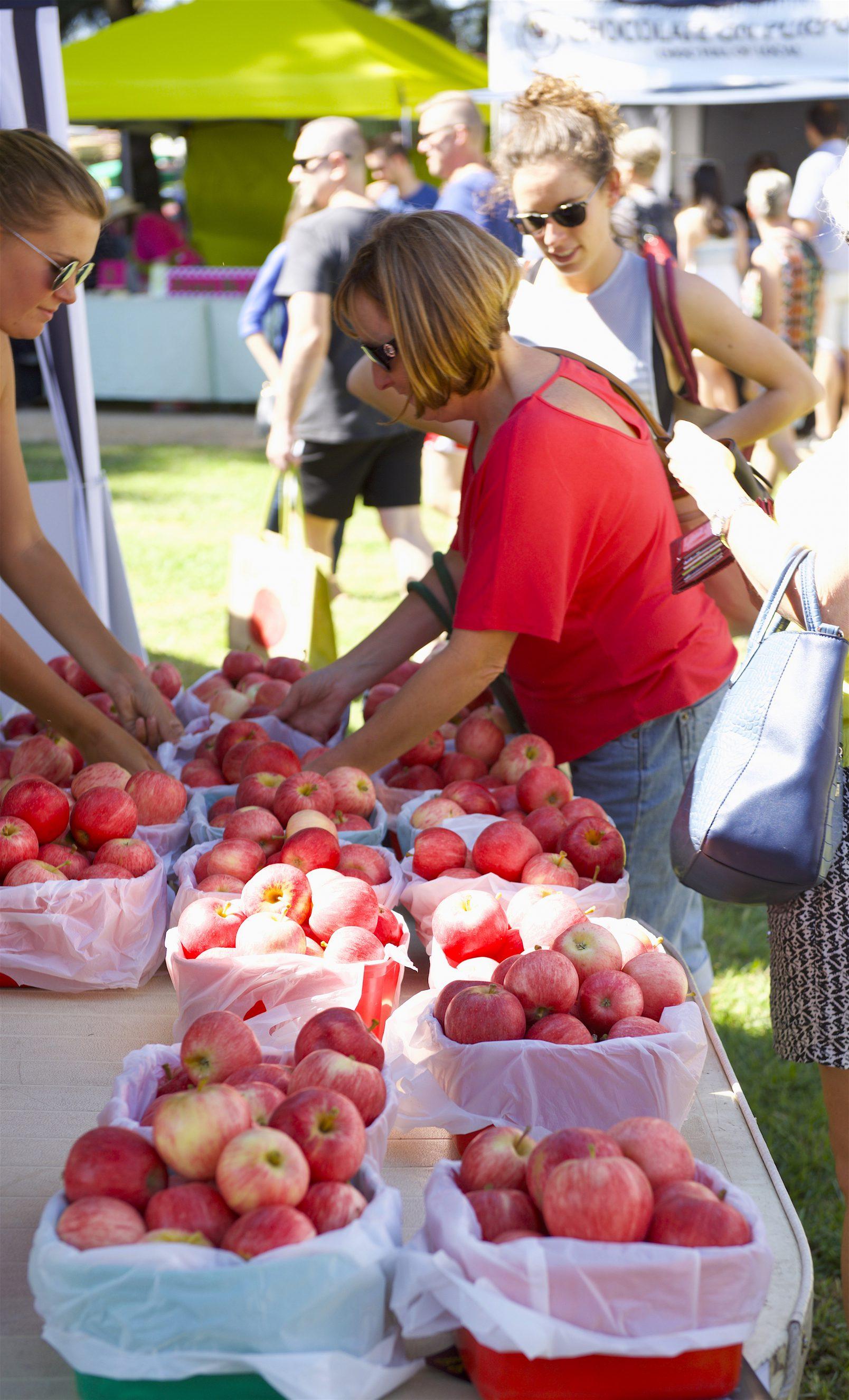 About Us Orange Farmers Market 1